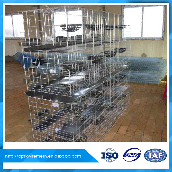 metal wire cage for pigeons