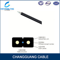 2 Core FRP GJXFH ftth indoor Drop Optic Fiber Cable price