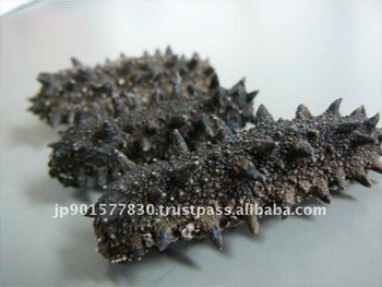 Dried Sea Cucumber Dried Seafood chinese food sea food restaurant