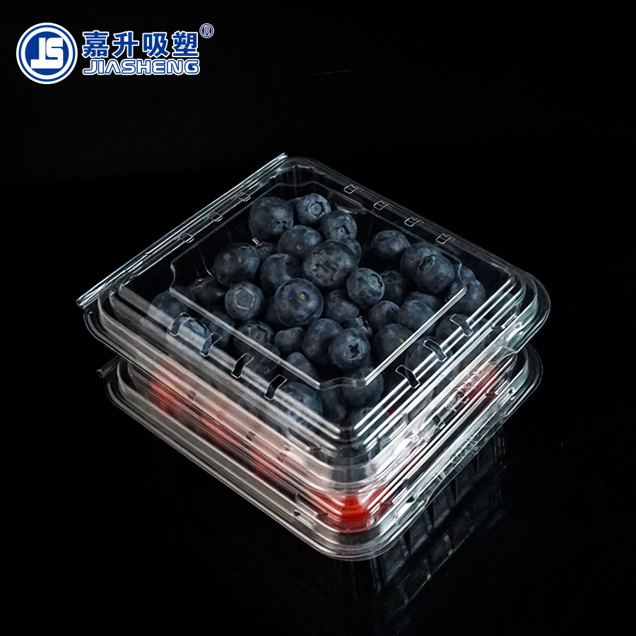 Clear Plastic Food Blueberry Fruit Packaging Containers