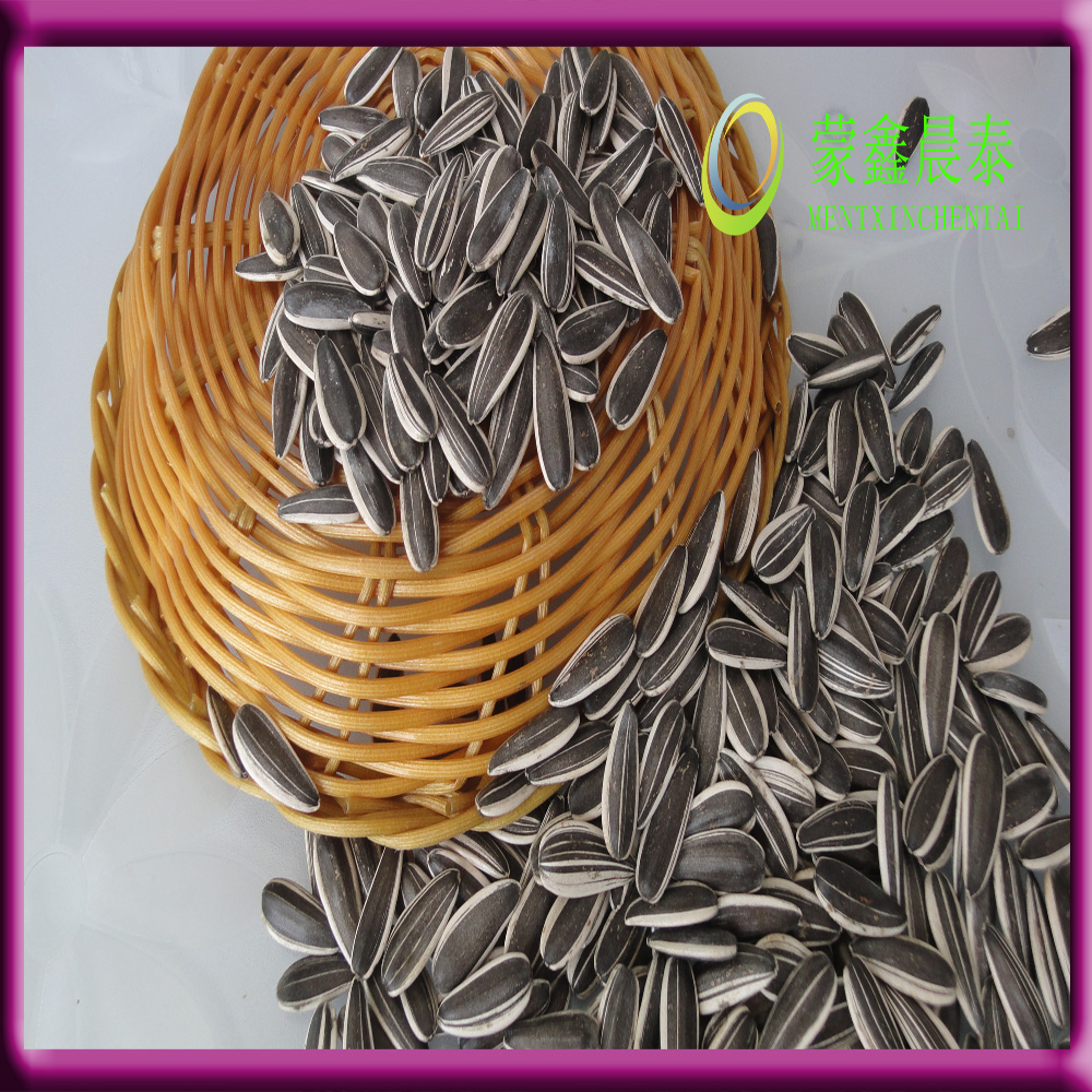 Natural Style and Common Cultivation Type pink sunflower seeds