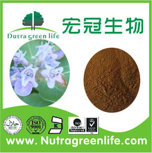 100% Natural 5% Vitexin Chasteberry Berry extract / Vitex Agnus-castus Extract Powder5% vitexin CAS No.: 3681-93-4