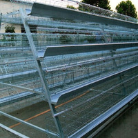 Hot Sale Large Cage For Chicken