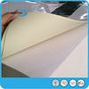 Hotmelt 80Gsm Adhesive Cast Coated Paper for Printing