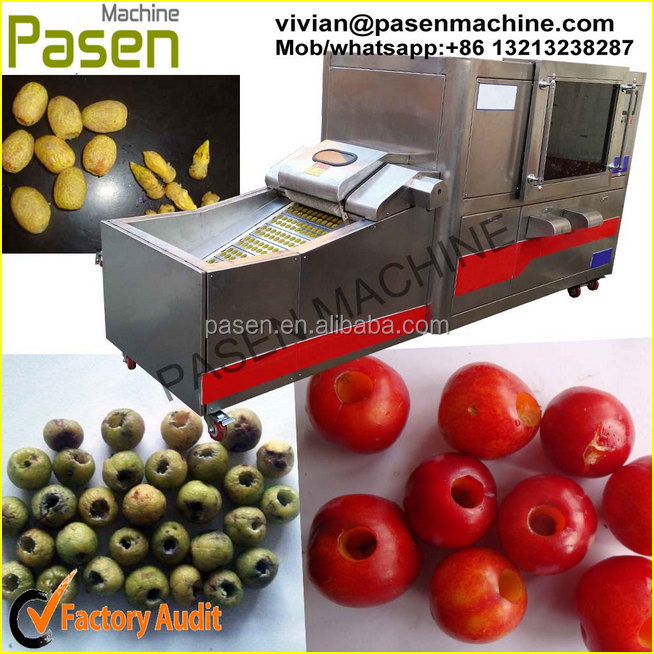 Professional Fruit Seed Removing Machine/olive Pitting Machine/cherry Pit Remove Machine
