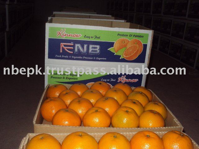 Mandarin Orange, Citrus fruit from Pakistan
