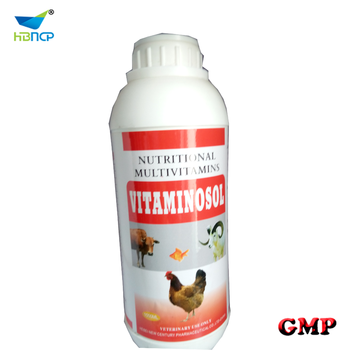 best multivitamin and amino acid oral sulution