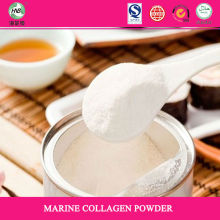 Bulk distributors Canada Hydrolyzed pure Fish collagen powder