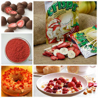 Freeze-dried strawberry powder for fruit juice/baking etc. foods ingredient