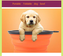 Collapsible Pet Bowl / Travel Bowl Water Feeder / Dog Portable Bowl/ Melamine Dog Bowl
