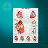 3d coloured medical teaching heart wall anatomy chart