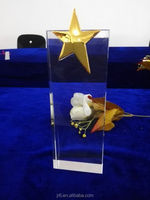 Star Glass Award,Cheap Crystal Trophy