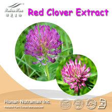 Manufacturer Supply High Quality red clover extract powder,Red Clover Extract, Trifolium pratense p.e,2.5~40% Isoflavones