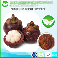 Best price natural Manggis Fruit Extract