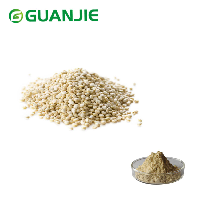 QUINOA POWDER for Nutritional Supplement
