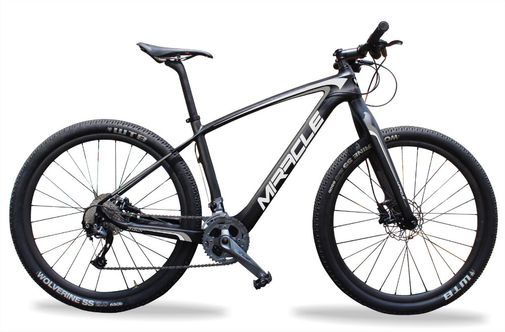 Cheaper Carbon mountain Bike,29er complete Bike with Carbon Frame Fork and Wheelset