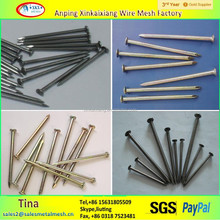 Q195 hot dipped galvanized common iron nails making machine