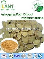High quality of Astragalus Root Extract with Polysaccharides and Astragaloside