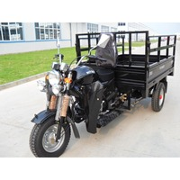 Newest high quality gasoline 250cc cargo truck china three wheel motorcycle