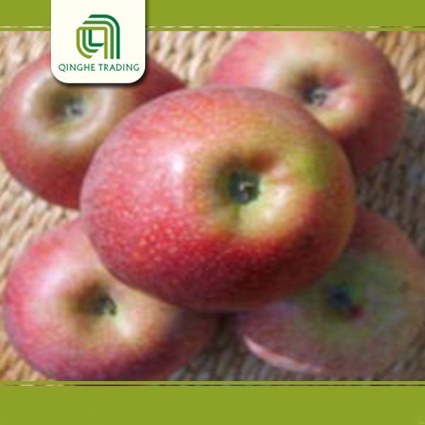 packing carton for fresh apple kashmir apple fresh red fruits