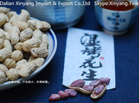 Factory hot sale bold peanut supplier from india
