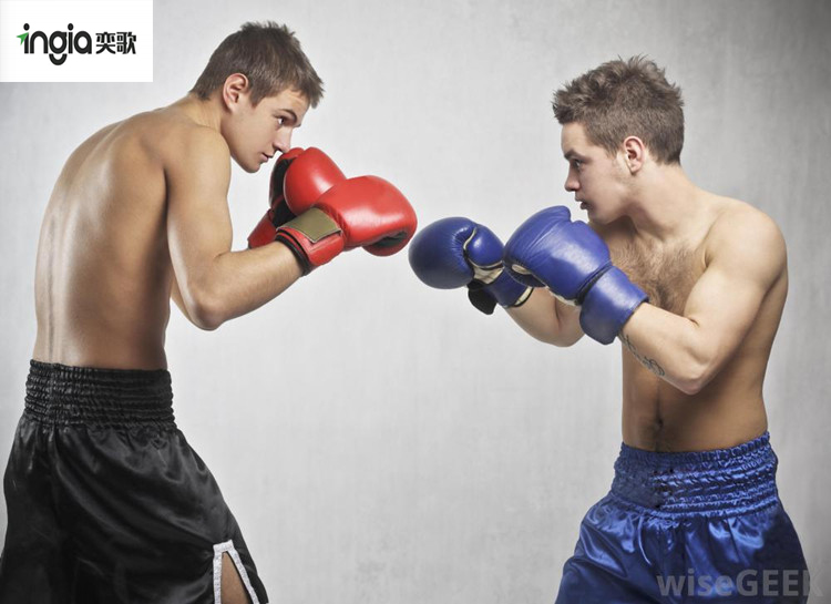 two-boxers-with-gloves.jpg