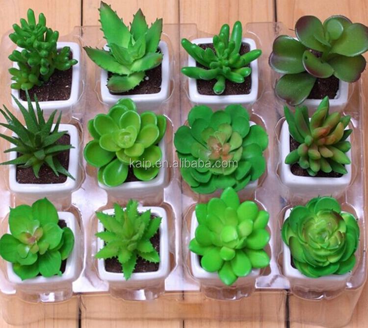 Venta al por mayor artificial cactus plantas artificiales for Suculentas por mayor
