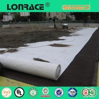 250g/m2 Needle Punched High Strength Non Woven Geotextile for Road Construction