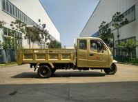Chognqing heavy type 1000CC dumper closed cabin triciclo New Closed Cabin Adult Tricycle