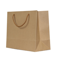 cute carton pattern luxury shopping paper bag with printing