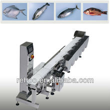 Automatic Weight Sorting machine for fish pieces and chicken leg