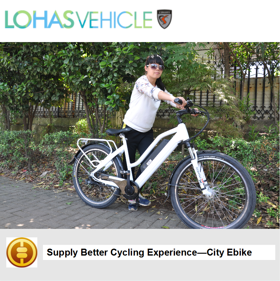 fashionable city style E bicycle! electric city bike city with 48v 500w