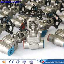 FORGED STEEL NPT/BSPT/SCREWED Integral Flanged Gate Valve China