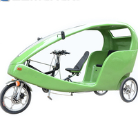 Three Wheeled Adult Bicycle 3 Wheel Electric Pedal Cars for Adults