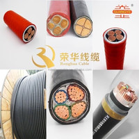 0.6/1KV XLPE Insulated PVC Jacket Power Cable(YJV)