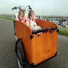 Newest China Sport Diesel Engine Cargo Tricycle