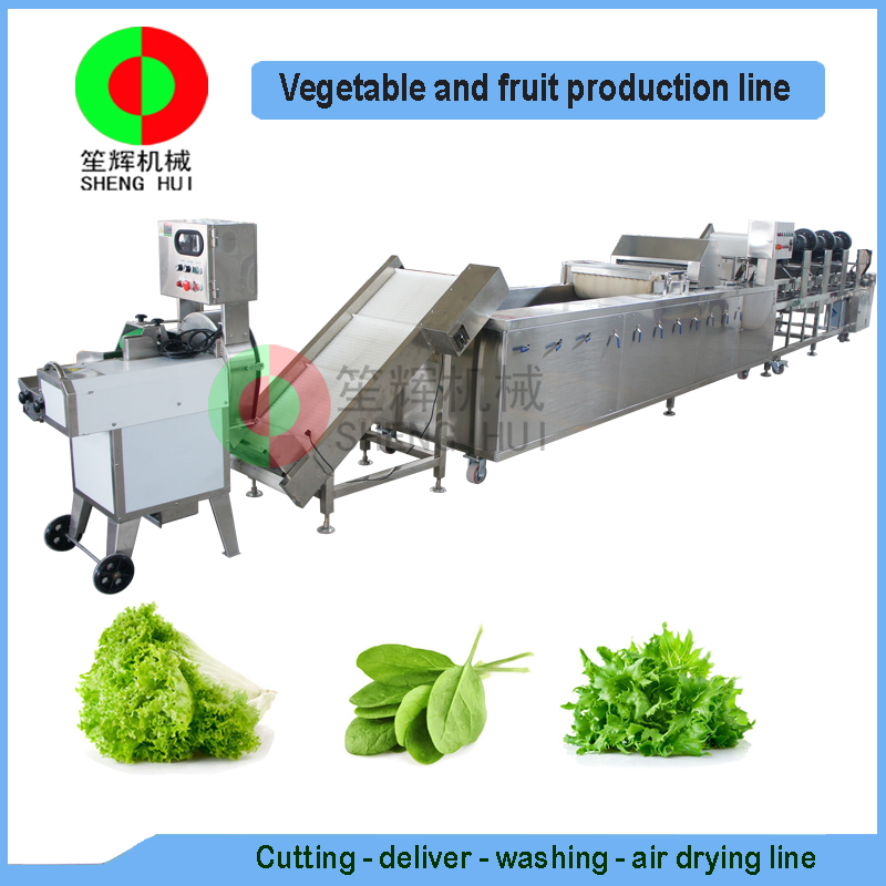 Very popular air bubble ozone fruit and vegetable cutting washing drying production line, full automatic machine