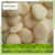 Non existence wholesale IQF frozen water chestnuts slice