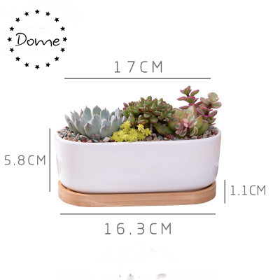 White rectangle indoor decorative ceramic succulent pot with bamboo tray