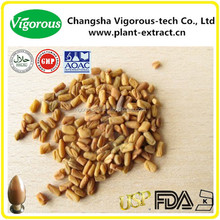 High Quality FenugreekSeed Extract/fenugreek capsules