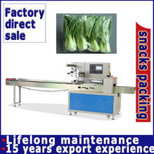 Full Automatic Horizontal Packing Machine For Vegetables And Fruit