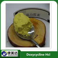 Veterinary medicine doxycycline hcl raw material for cattle horse