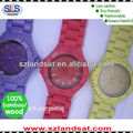 2014 hot sale wooden wrist watch with color painting BW20B