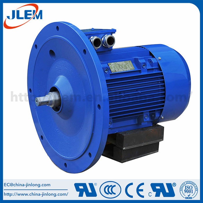 China professional manufacture lv ac three phase motor