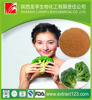 Wal-Mart supplier Broccoli Extract,brands broccoli,machine broccoli powder
