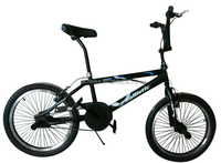 "20"" Adult Youth BMX Bicycle Freestyle Bike"