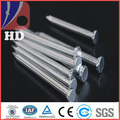 Galvanized concrete nails / Concrete steel nail China professional factory