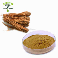 Chinese Herbal Medicine Ligustilide 1% Angelica Root Extract Powder