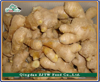2015 Wholesale China Dried Ginger, Dry Ginger Price