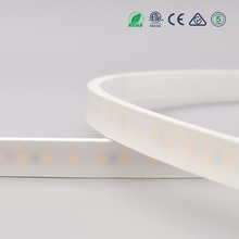 New products 12V 24V SMD 2835 3528 5050 5630 Fog face silicone-tube IP67 waterproof led strip